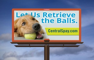Central Spay, Neuter and Wellness Clinic